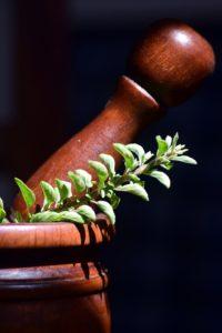 Ervas medicinais que estimulam a saúde e imunidade de toda a família - parte 1